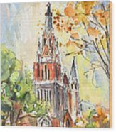 A Church In Our Street In Budapest Wood Print