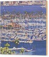 A Clear Day In San Diego Wood Print