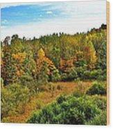 A Cleveland Landscape Wood Print