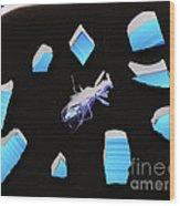 A Clockwork Blue Wood Print