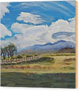 A Cloudy Day On Antelope Island Wood Print