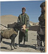 A Coalition Forces Military Working Dog Wood Print