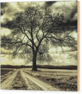 A Cold Wind Blows  Wood Print
