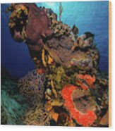 A Colorful Reef Scene With Sunburst Wood Print
