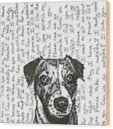 A Conversation With A Jack Russell Terrier Wood Print