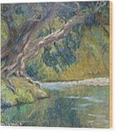 A Coramandel Stream Wood Print