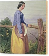 A Country Girl Standing By A Fence Wood Print