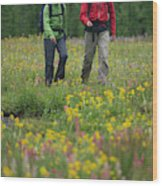 A Couple Hikes Through A Field Wood Print