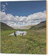 A Couple Hiking Through A Field Wood Print