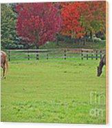 A Couple Horses And Beautiful Autumn Trees Wood Print