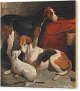 A Couple Of Foxhounds With A Terrier The Property Of Lord Henry Bentinck Wood Print