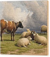 A Cow And Five Sheep Wood Print