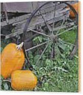 A Crop Of Pumpkins Wood Print