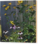 A Cute Couple Of Yellow Finches Wood Print
