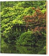 A Dab Of Color Wood Print