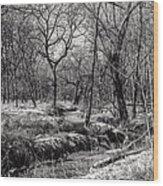 A Dash Of Snow Wood Print