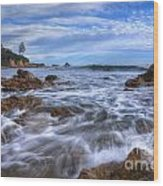 Low Tide In Corona Del Mar Wood Print