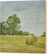 A Day At The Farm Wood Print