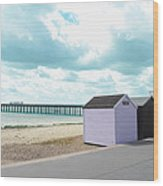 A Day By The Beach Wood Print