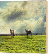 A Day In Kentucky Wood Print by Darren Fisher