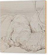 A Dead Stag Wood Print by Sir Edwin Landseer