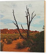A Dead Tree Foreground A Maze Of Rocks Wood Print