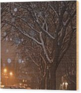A December Night Wood Print