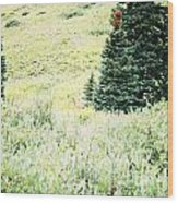 A Deer Hiding In The Tundra Wood Print