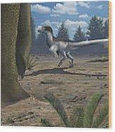 A Deinonychosaur Leaves Tracks Wood Print