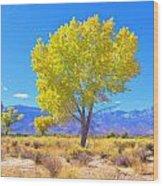 A Desert Autumn Wood Print