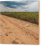 A Dirt Road In The Plains Wood Print