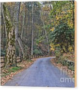 A Drive In The Country Wood Print by Paul Ward