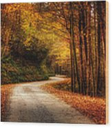 A Drive In The Mountains Of Western North Carolina Wood Print