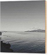 A Drop In The Ocean Wood Print by Lisa Knechtel