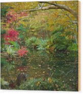 A Fall Afternoon Wood Print