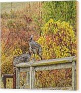 A Fall Photo Wood Print