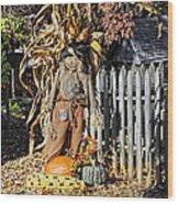 A Fall Scarecrow Display Wood Print