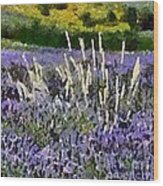 A Field Of Lavender Wood Print
