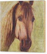 A Fine Horse Wood Print