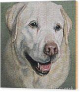 A Fine Old Lady Yellow Labrador Portrait Wood Print