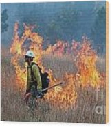 A Firefighter Ignites The Norbeck Prescribed Fire. Wood Print