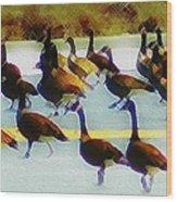A Flock Of Geese Wood Print
