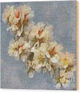 A Flourishing Cherry Branch Wood Print