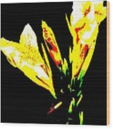 A Flower Wood Print