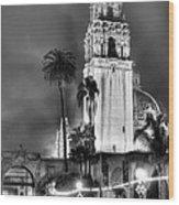 A Foggy Night On Balboa Wood Print