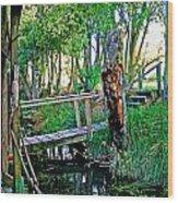 A Forgotten Delta Dock Wood Print