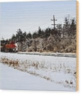 A Freight Train On A Snowy Day  Wood Print by Tom Druin
