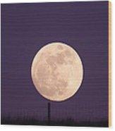 A Full Moon Behind My Fence Wood Print