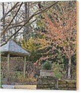 A Garden Walk In February Wood Print