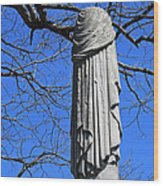 A General's Draped Monument Wood Print